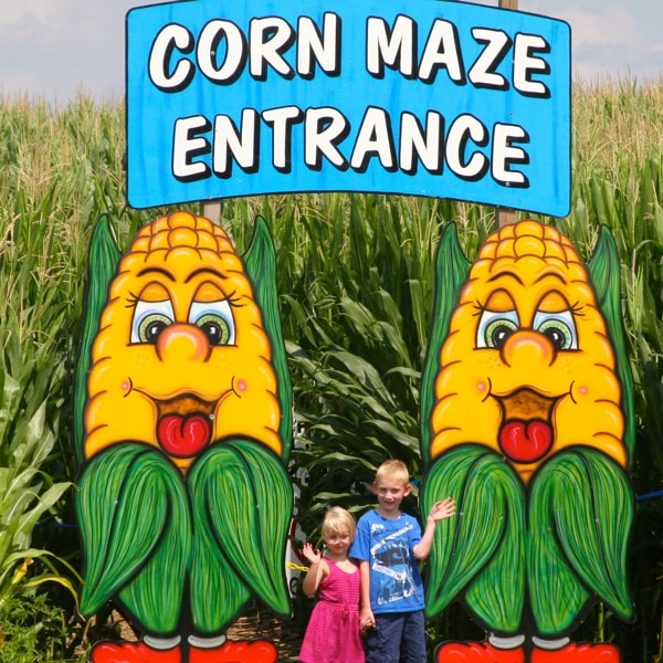 Corn Maze 600x600 Min Heaven Hill Farm Garden Center