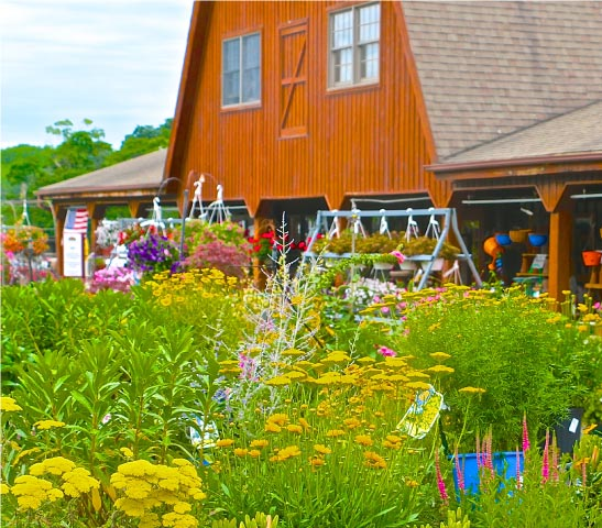Home Heaven Hill Farm Garden Center