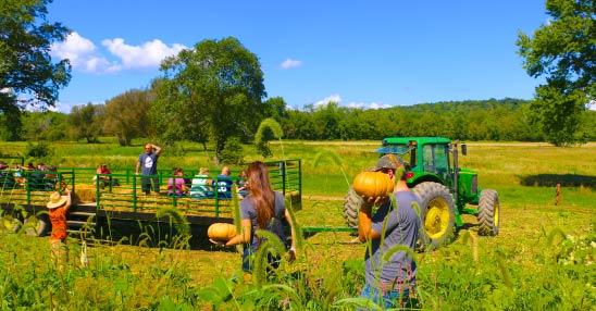Great Pumpkin Festival | Heaven Hill Farm & Garden Center