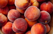 the peach brothers are coming to Heaven Hill Farm